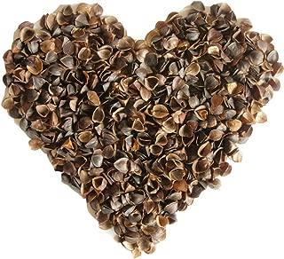 product image for ComfyComfy 10 lbs Buckwheat Hulls (Grown in USA)
