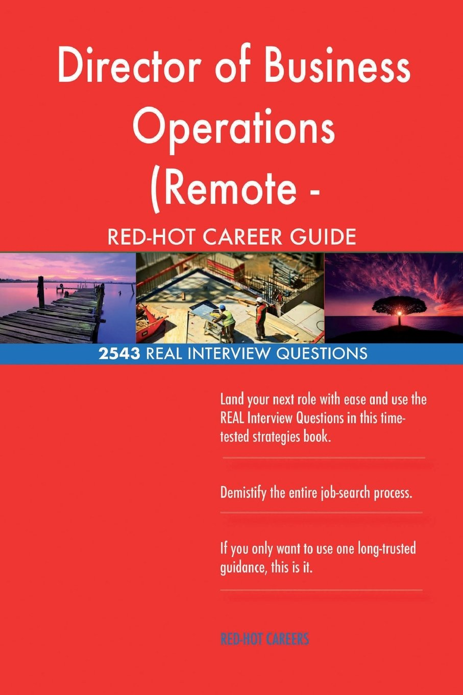 Director of Business Operations (Remote - Americas) RED-HOT Career; 2543 REAL In pdf
