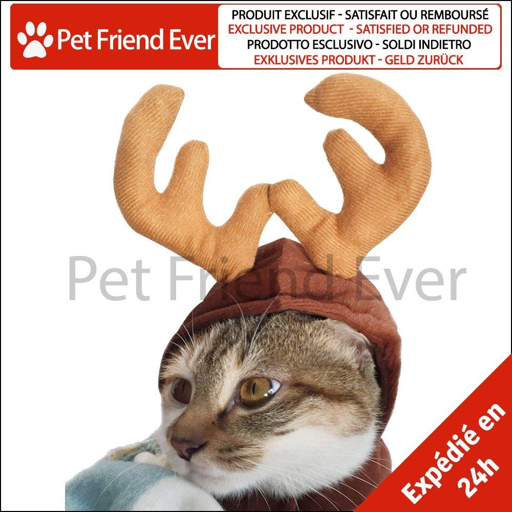 goditi la spedizione gratuita vendita limitata grande collezione Dettagli su Pet Friend Ever – Cappello Costume di cervo per piccolo cane &  gatto – corna...
