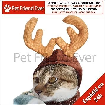 8413687a33657 Pet Friend Ever – Sombrero Disfraz de ciervo para pequeño perro   gato –  Cuernos de