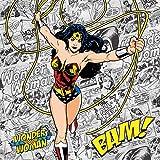 DC Comics Wonder Woman PS4 Controller Skin - Wonder Woman Comic