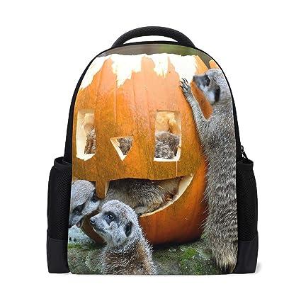 7b49cc48d074 Amazon.com | Backpack Precious Animals Enter The Spirit Of Halloween ...