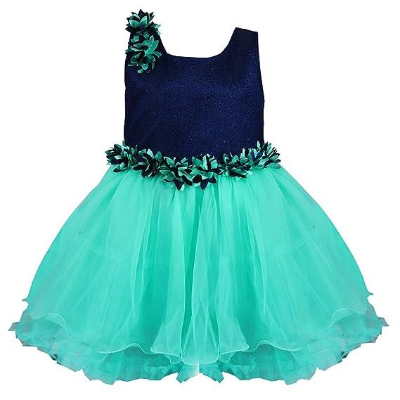 6d8f5cb58666c6 Wish Karo Baby Girls Net Frock Dress - (fr1005sgnw_0-3 Months_Blue)