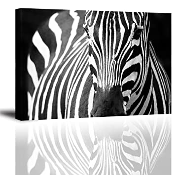 Zebra Wall Art Decor For Bedroom, PIY African Animals Picture Canvas  Prints, Black And