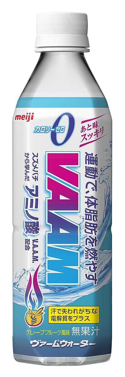 可動メイド閉じ込める大塚製薬 アミノバリュー パウダー8000(1L用) 48Gx5袋 [機能性表示食品]
