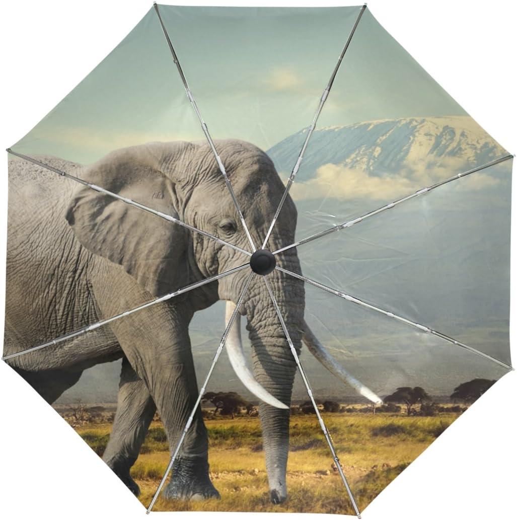 alaza Elephant Kilijaro Montagne Voyage Parapluie Auto Ouvrir la liste Fermer la Protection UV Coupe-Vent l/éger Parapluie