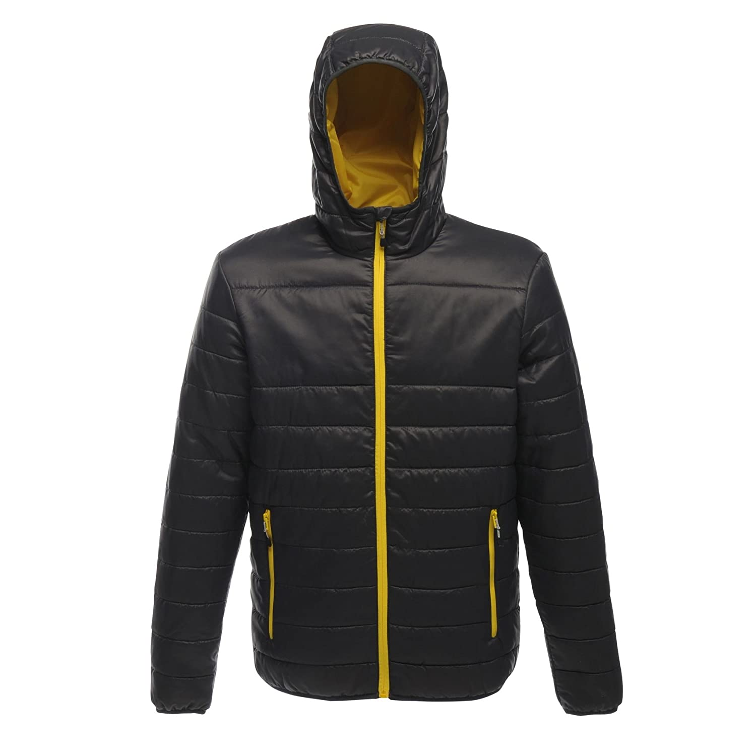 Moderno Uomo Acadia Warmloft Down Touch Jacket Regatta