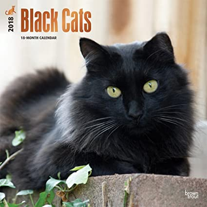 Negro Gatos 2018 calendario de pared