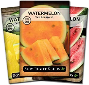 Sow Right Seeds - Tri-Color Watermelon Seed Collection for Planting - Red All Sweet, Yellow Crimson and Orange Tendersweet Watermelons. Non-GMO Heirloom Seeds to Plant a Home Vegetable Garden