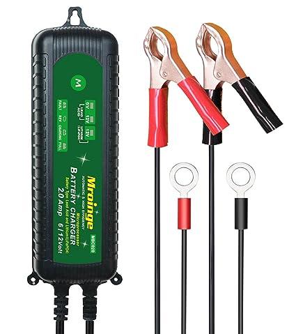 Mroinge - Cargador de batería para coche, 6 V, 12 V ...