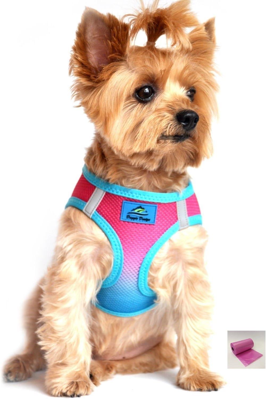 Doggie Design American River Ombre – Arnés para Perro de Ciruelo ...