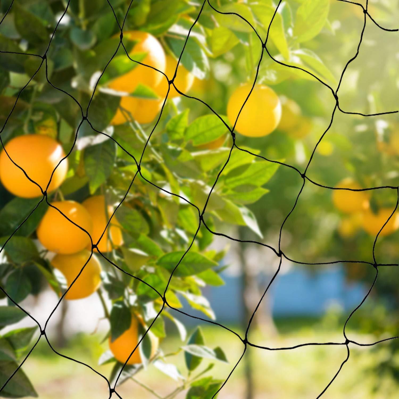 BaikaloTZ 25' X 50'/ 50' X 50' Garden Net Netting for Bird Poultry Aviary Game Pens w/ 2''x 2'' Mesh (50' X 50')