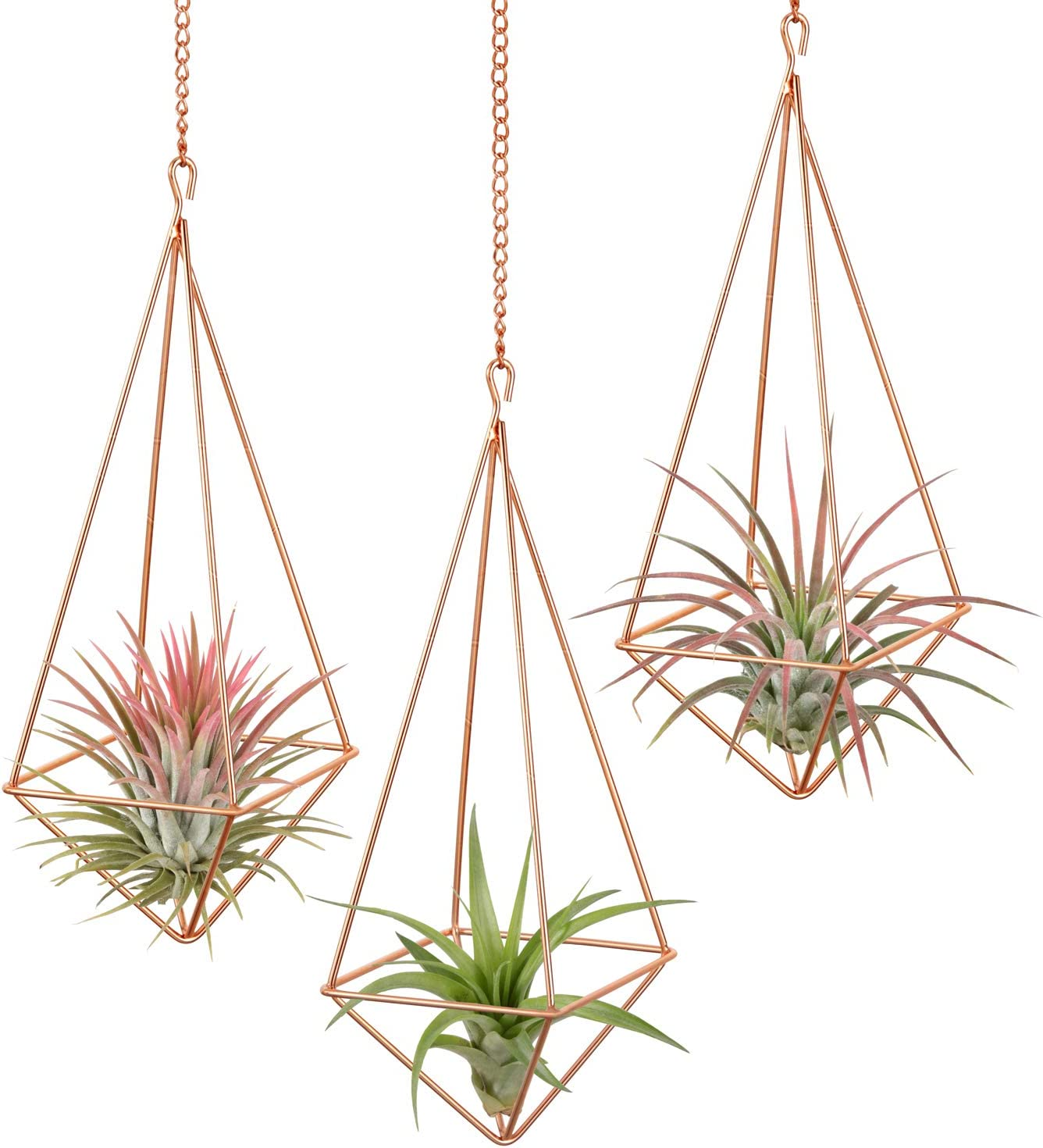 Dahey 3 Pcs Hanging Air Plant Holder Himmeli Geometric Planter Metal Airplant Rack Tillandsia Hanger with Chain in Modern Rustic Art Style for Home Decor Rose Gold