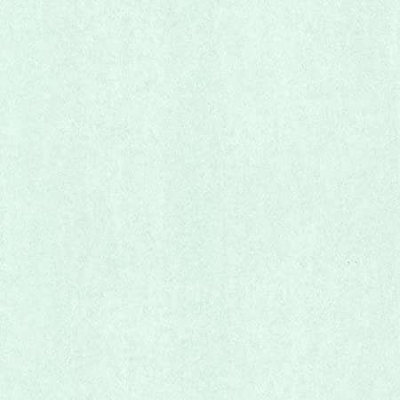 Eijf Finger Script 347578 Non-Woven Uni Wallpaper Plain Mint Green Marbled Fine: Amazon.co.uk: DIY & Tools