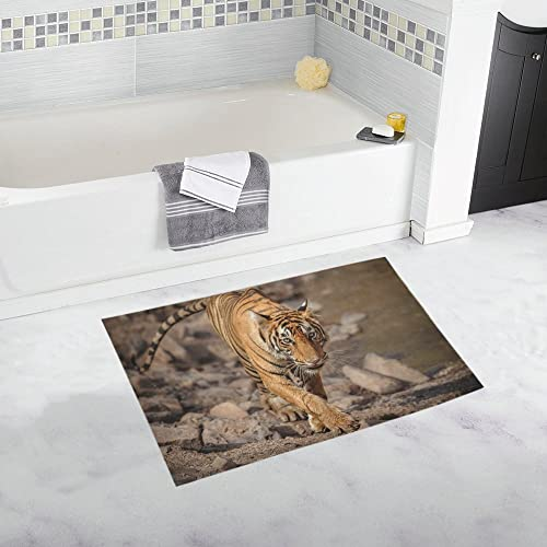 INTERESTPRINT Wildlife Tiger Animal House Decor Non Slip Bath Rug Mat Absorbent Bathroom Floor Mat Doormat Large Size 20 x 32 Inches
