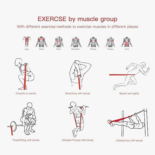 Banda de entrenamiento Balfer de látex prémium para ejercitar, estiramientos, entrenamiento con pesas y yoga, violeta: Amazon.es: Deportes y aire libre