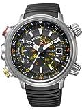 Citizen Herren-Armbanduhr Analog Quarz Titan BN4021-02E