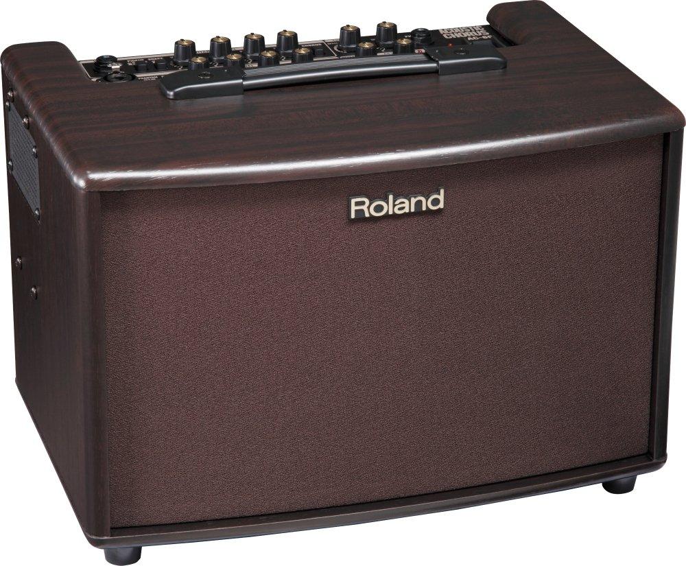 Roland ローランド アコースティック ギター アンプ  30W+30W ローズウッド調 AC-60-RW   B006FS1OR4