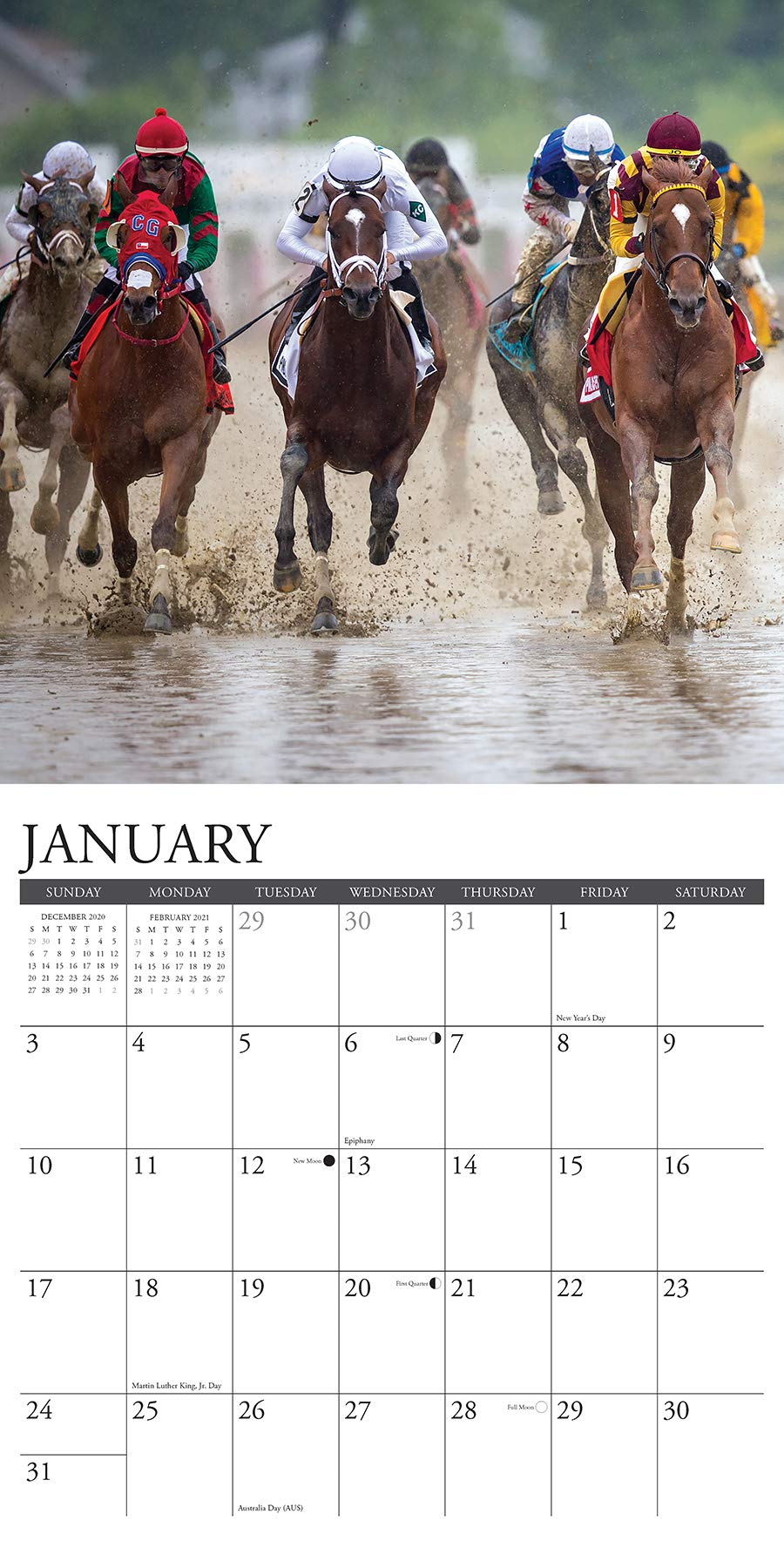 Horse Racing Calendar 2021 Horse Racing 2021 Wall Calendar: Willow Creek Press: 9781549212123