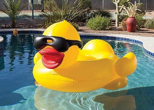 Unbekannt Game Derby Duck - Pato Flotador Hinchable: Amazon.es: Jardín