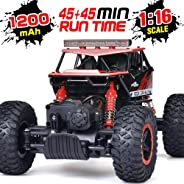 RC Car, NQD 1:16 Dual Motors Remote Control Truck, 2.4Ghz 4WD Off Road Remote Control Car with Two Rechargeable Batteries, Bu
