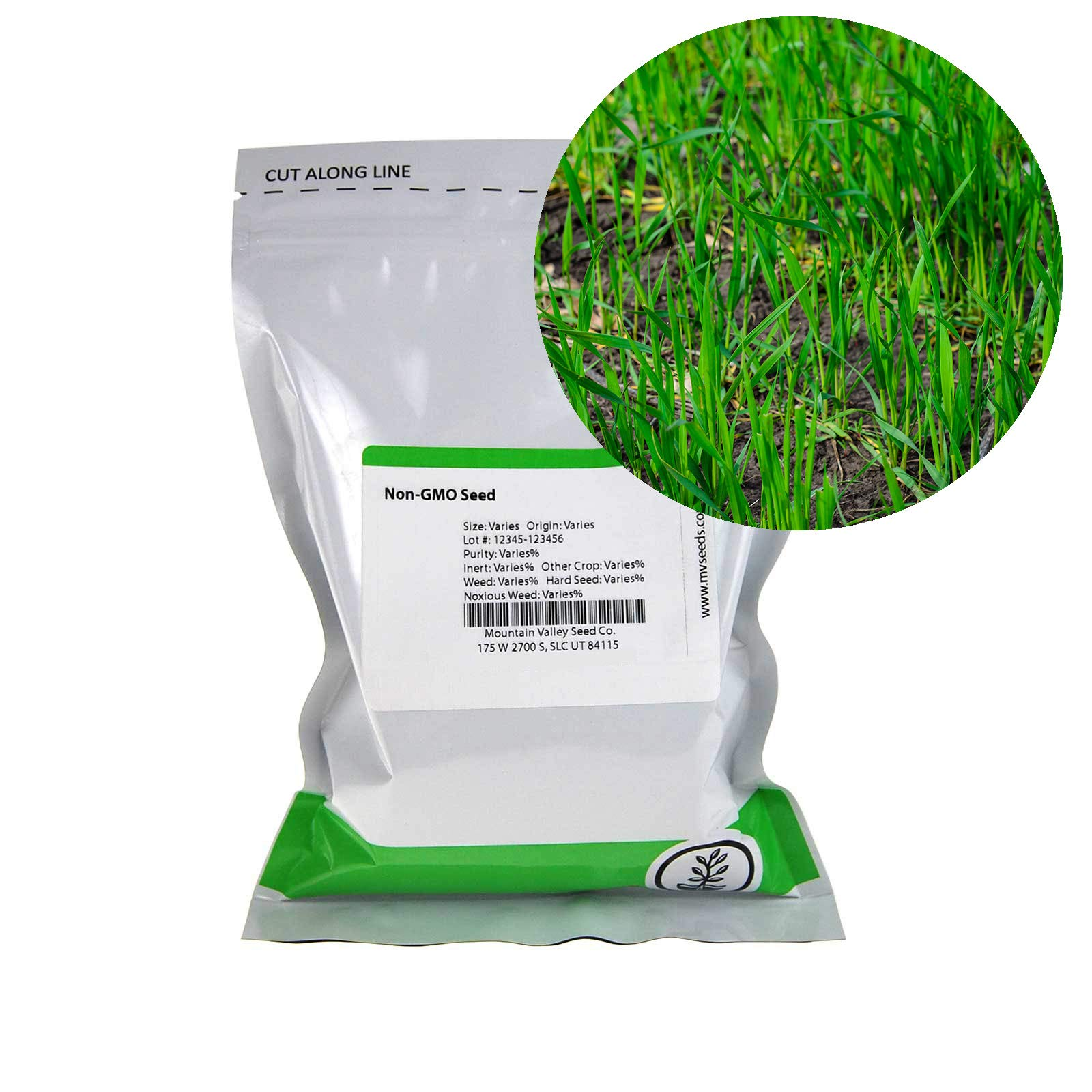 Winter Rye Seeds - 5 Lbs - Non-GMO Rye Grain Cover Crop Seeds