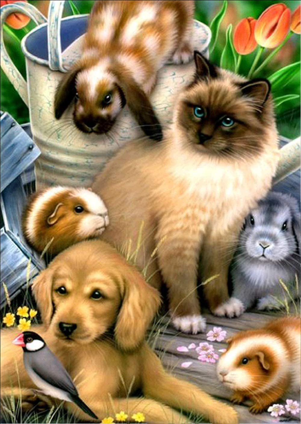 Kit de pintura de diamantes 5D para manualidades con números,diy pintura al oleo por numeros,cuadros punto de cruz kit decoración de pared, 30 x 40 cm, diseño de gato y perro