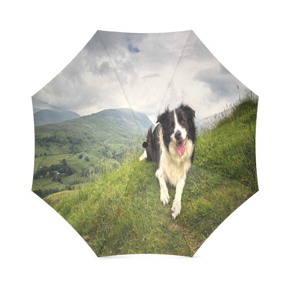 カスタムかわいいボーダーコリー犬コンパクト旅行防風防雨折りたたみ式傘 B075QXSRZN