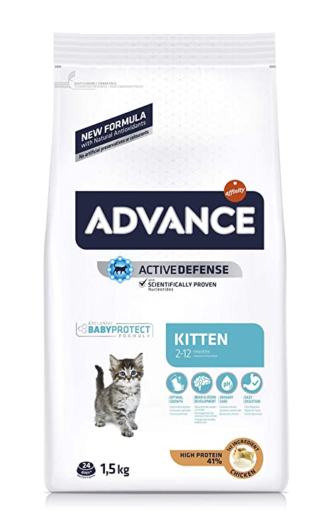 Advance Kitten - Pienso para Gatitos - 1.5 kg: Amazon.es ...