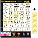 Amazon.com : Dumbbell Exercises Workout Poster, NOW LAMINATED - Strength Training Workout Chart