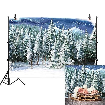 Amazoncom Allenjoy 7x5ft Winter Landscape Backdrop For Studio
