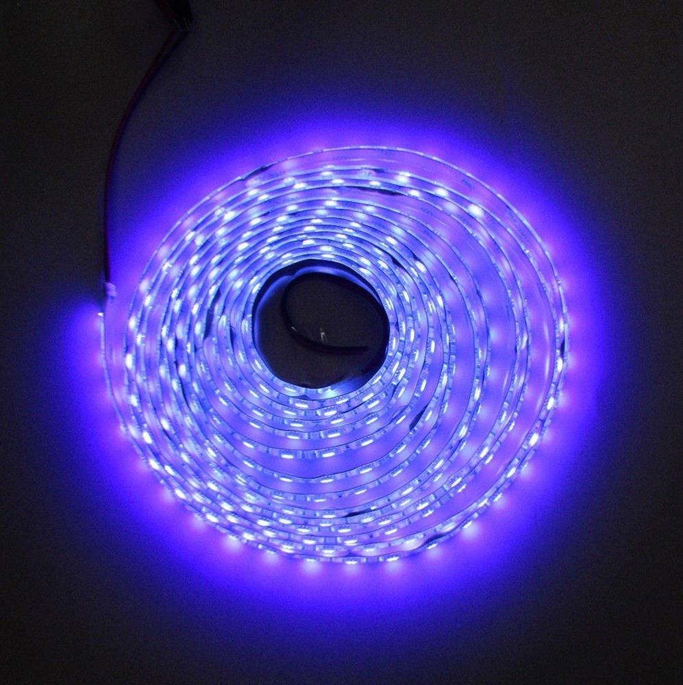 5M 12V 5050SMD Waterproof 395 405nm Ultraviolet UV LED