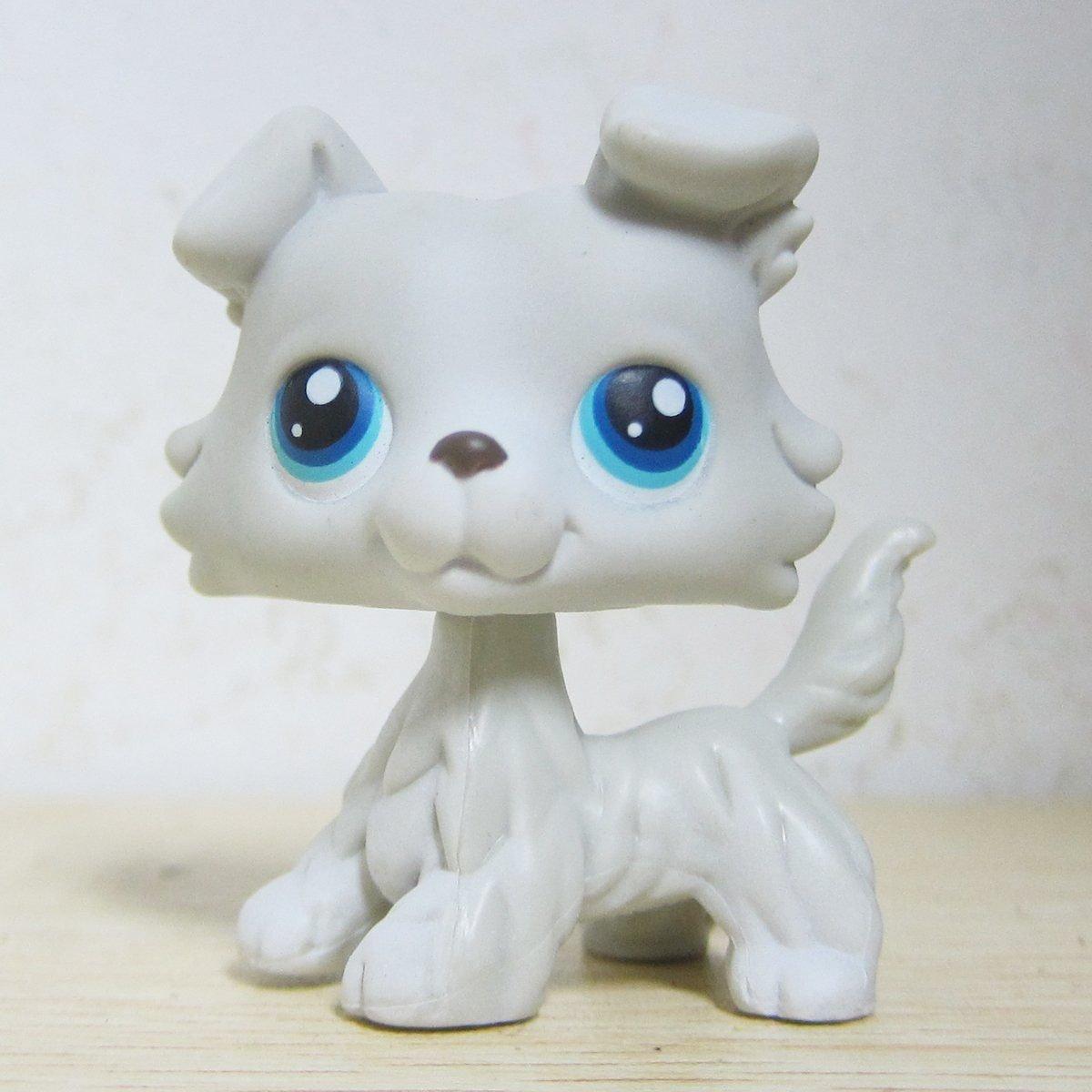 Amazoncom Good Luck Charm Littlest Pet Shop Collection Lps 363