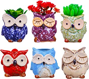 ROSE CREATE 6 Pcs 3 Inches Owl Pots, Little Ceramic Succulent Owl Planters with Drainage Holes