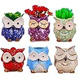 6 Pcs 3 Inches Owl Pots, Little Ceramic Succulent Owl Planters with Drainage Holes