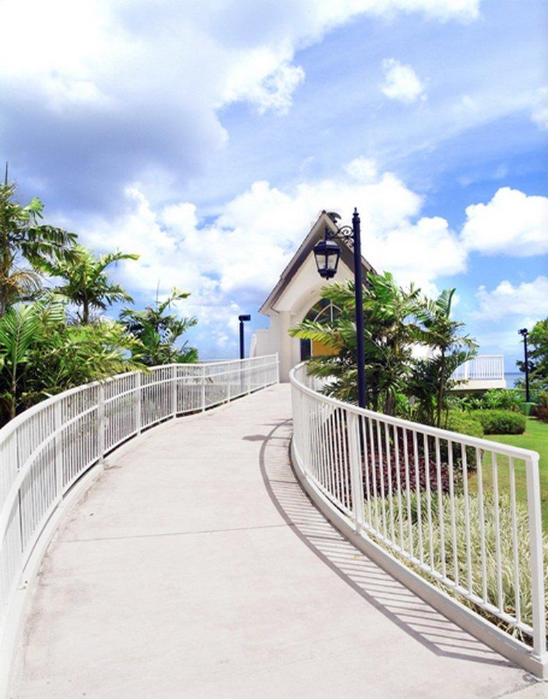 ココナッツの木の枝 写真撮影用背景幕 スタジオ背景 5x7フィート   B01GXECD24