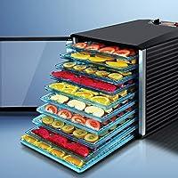 DEVANTI 10 Trays Food Dehydrator Commercial Fruit Dryer Beef Jerky Maker