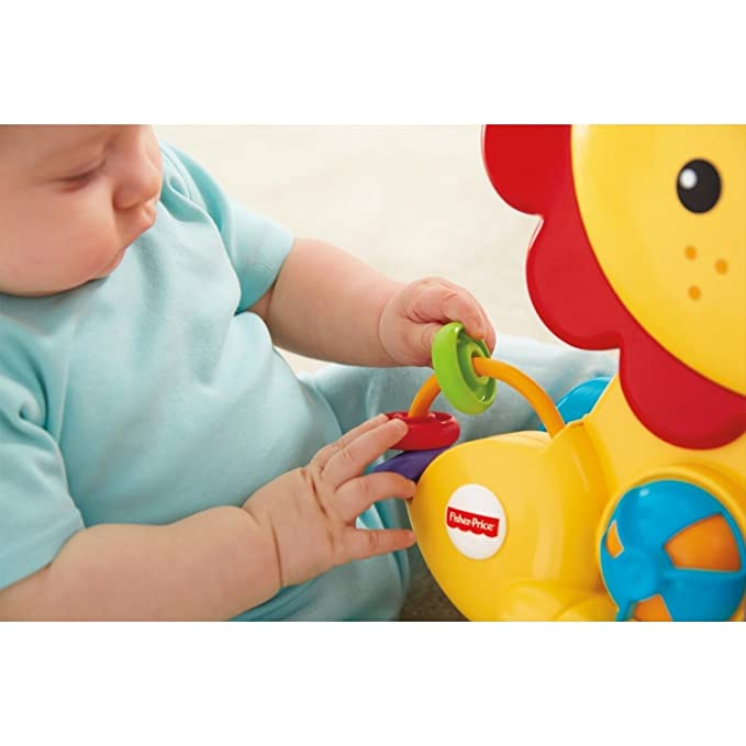 Fisher-Price Everything Baby Y9854 andador Multicolor ...