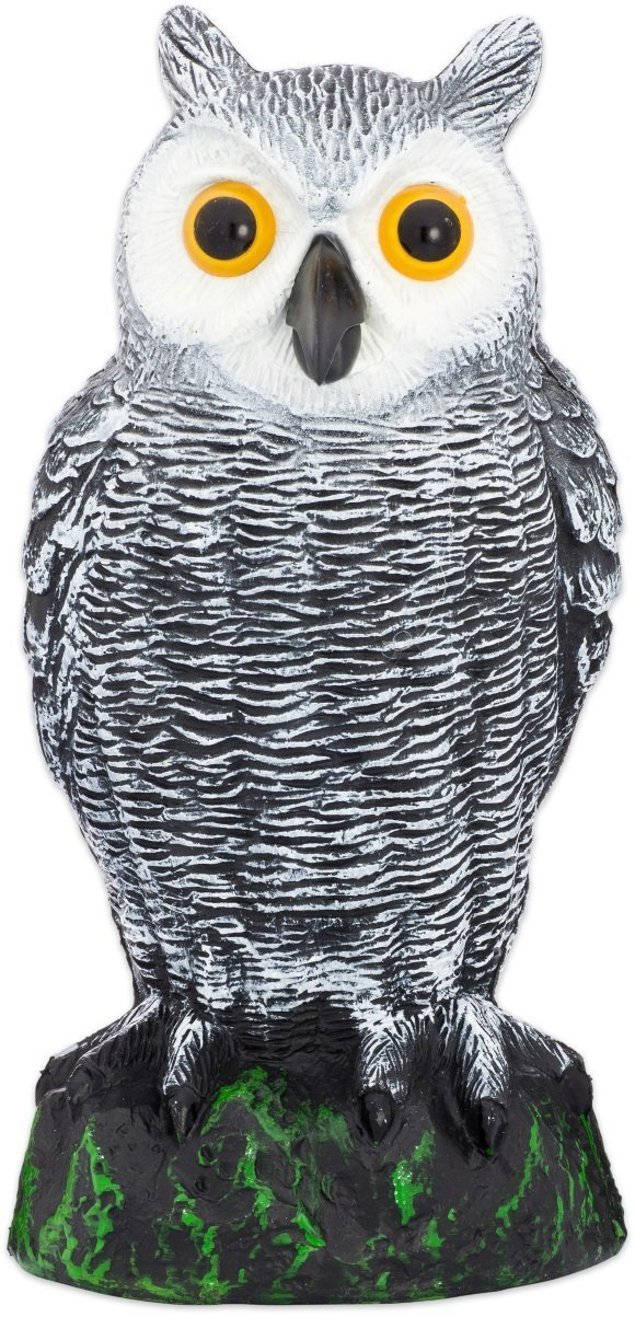 Bird Blinder Scarecrow Fake Owl Decoy - Pest Repellent Garden Protector – (Small)