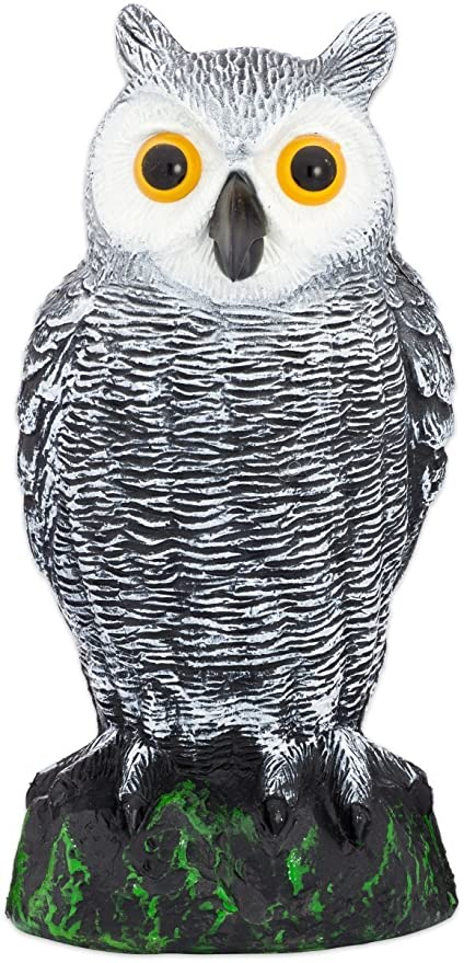 Beau Bird Blinder Scarecrow Fake Owl Decoy   Pest Repellent Garden Protector U2013  (Small)