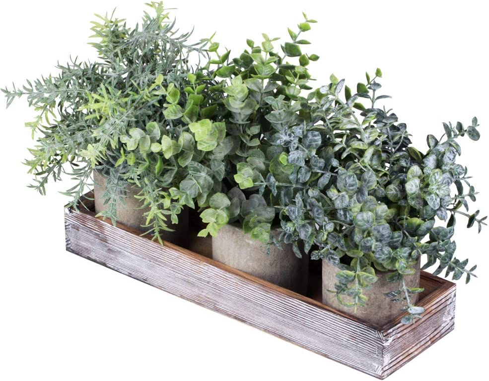 Set of 3 Mini Potted Artificial Eucalyptus Plants Faux Rosemary Plant Assortment with Wood Planter Box for Indoor Office Desk Apartment Wedding Tabletop Greenery Decorations 8.7