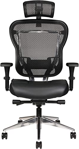 Oak Hollow Furniture Aloria Series Office Chair Ergonomic Executive Computer Chair