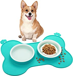 Double Pet Dog Slow Feeder Bowl Bloat Stop Pet Bowl Anti-Choking Puppy Food and Water Feeder with Non-Skid Silicone Mat Plastic Water Bowl for Dogs Cats Pets (Green)