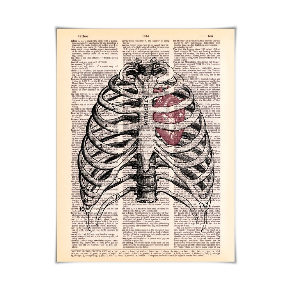 Amazon Sternum Heart Anatomy Printed On Vintage Dictionary