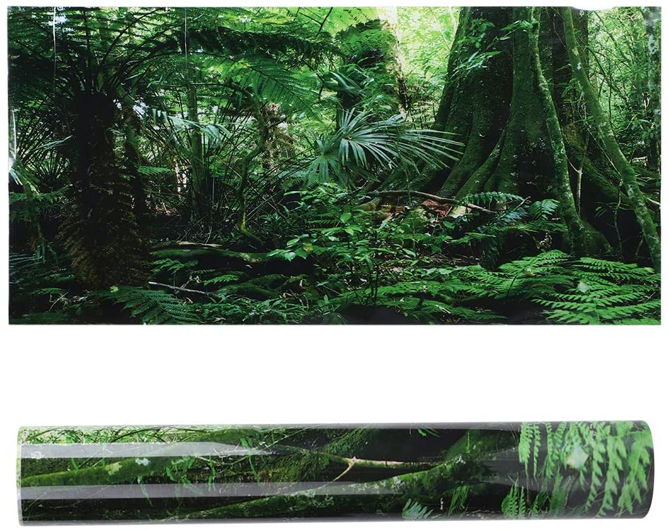 Fish Tank 3D Rainforest Background, PVC Adhesive Underwater World Aquarium Decor Backdrop Poster Wallpaper Landscape Sticker