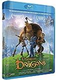 Chasseurs de dragons [Blu-ray]
