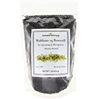 Broccoli Seeds for Sprouting & Microgreens | Waltham 29 Variety | Non GMO & Heirloom Seeds | Bulk 1 LB Resealable Bag…
