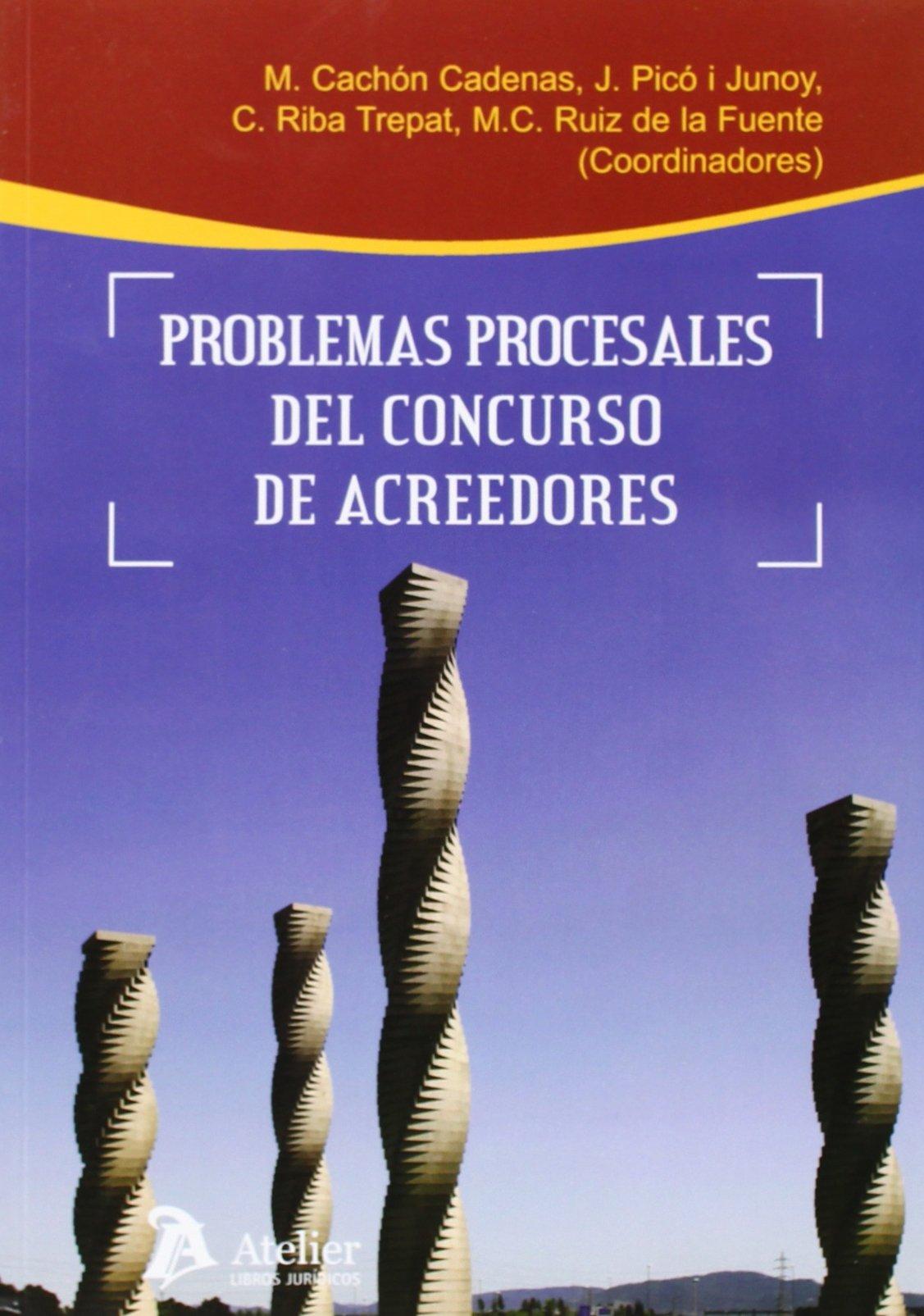 Problemas Procesales Del Concurso De Acreedores Processus Iudicii: Amazon.es: Manuel Cachon Cadenas: Libros