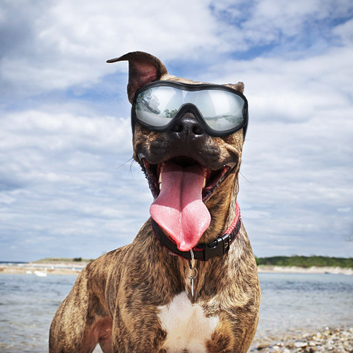 Dog Goggles - Dog Sunglasses Pet Sunglasses for Medium to Large Dogs (Black)
