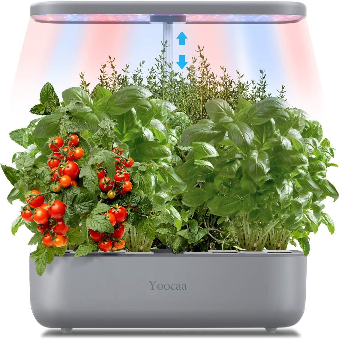 Yoocaa 12 Pods Hydroponics Growing System Indoor, Large Indoor Herb Garden with LED Light, Up to 19.4'' Height Adjustable Hydroponics Gardening System for Home Kitchen Gardening